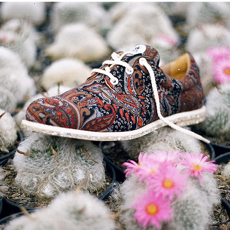Fonte: Site Insecta Shoes